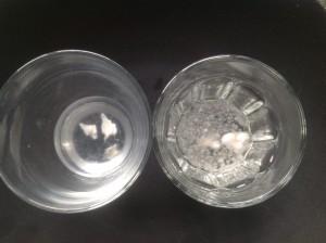 白カビ培養2